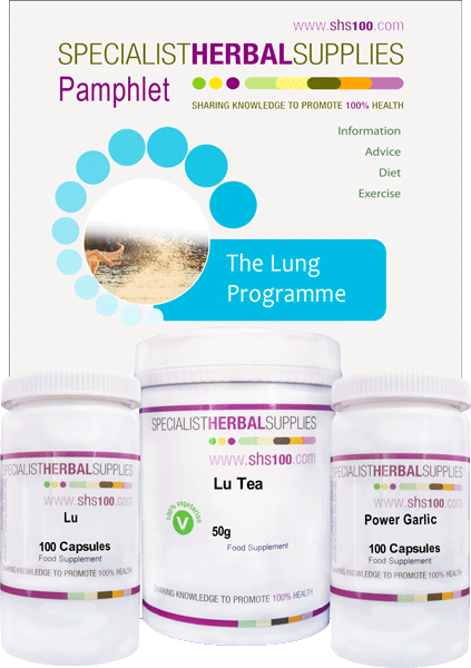 Lung Programme image
