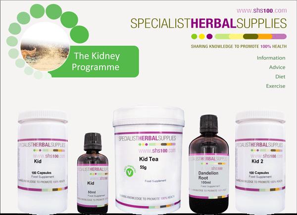Kidney Programme image