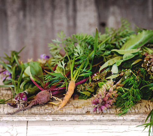 Nutritional Herbs image